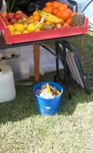 donations of fruit were placed on the open table, compost bin at the ready, day four